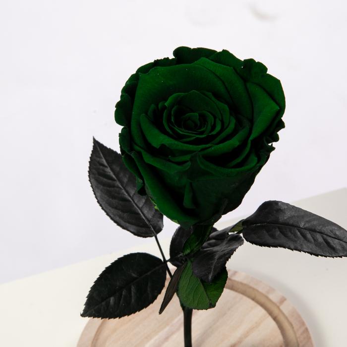 Trandafir Criogenat Verde [0]