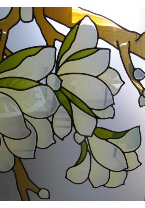 Geam Decorativ Usa Interioara Model MAGNOLIA OLIV 3