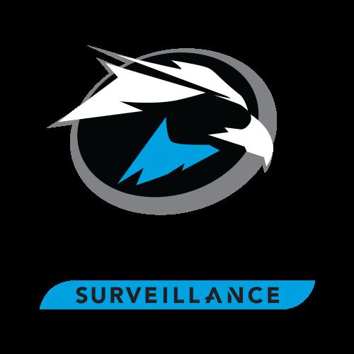Hard disk 1TB - Seagate Surveillance SKYHAWK  ST1000VX [2]