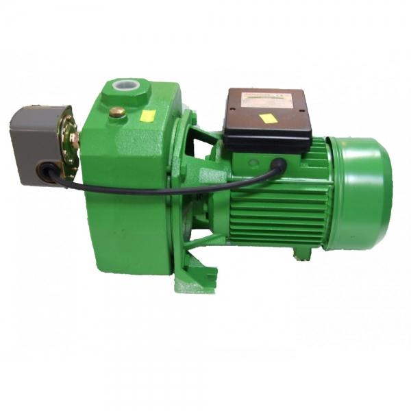 Pompa de apa de suprafata ProGarden JDP505A 0