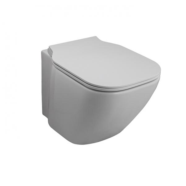 Vas wc suspendat, Essence-C 0