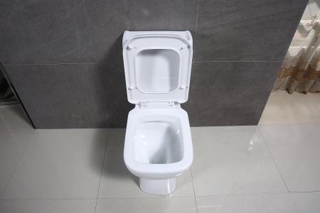 Vas wc Duobloc cu rezervor si capac Soft Close inclus, Cimberly, Dalet [5]