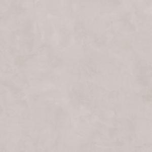 Gresie portelanata gri, 50.2x50.2 cm [0]