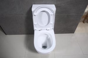 Vas wc Rondo duobloc cu capac soft close inclus [2]
