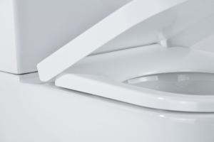Vas wc Rondo duobloc cu capac soft close inclus [5]