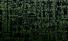 Canvas Champagne Gold SH2CSCVC 2