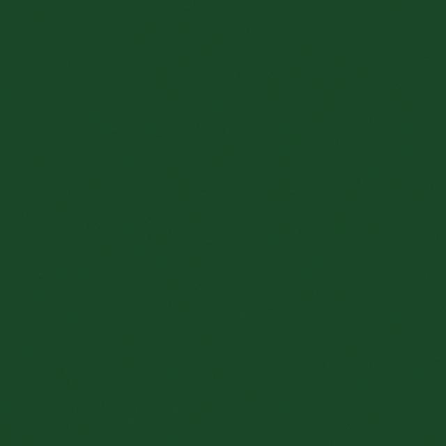 SC80-56 DARK GREEN [0]