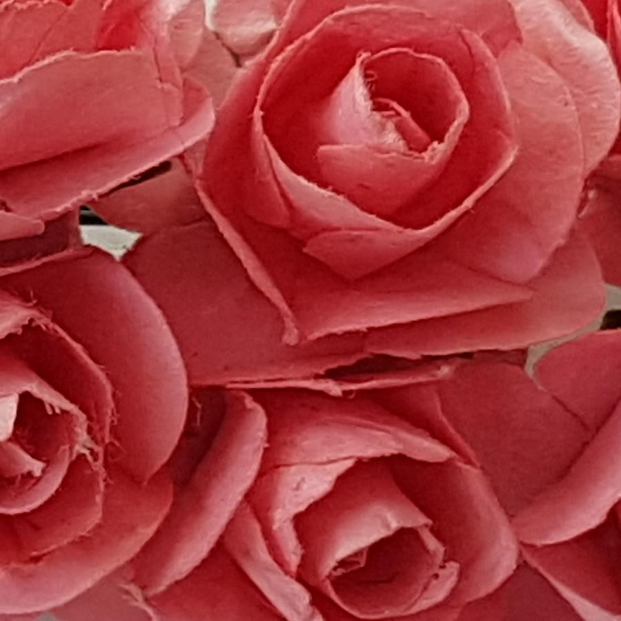 roz prafuit - flori hartie