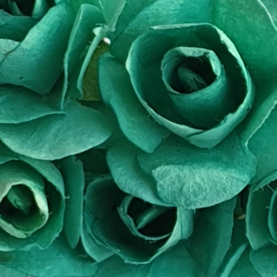turcoaz - flori hartie
