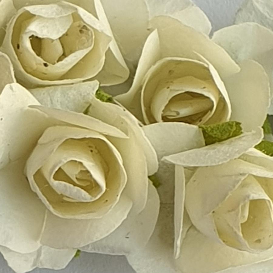 alb murdar - flori hartie