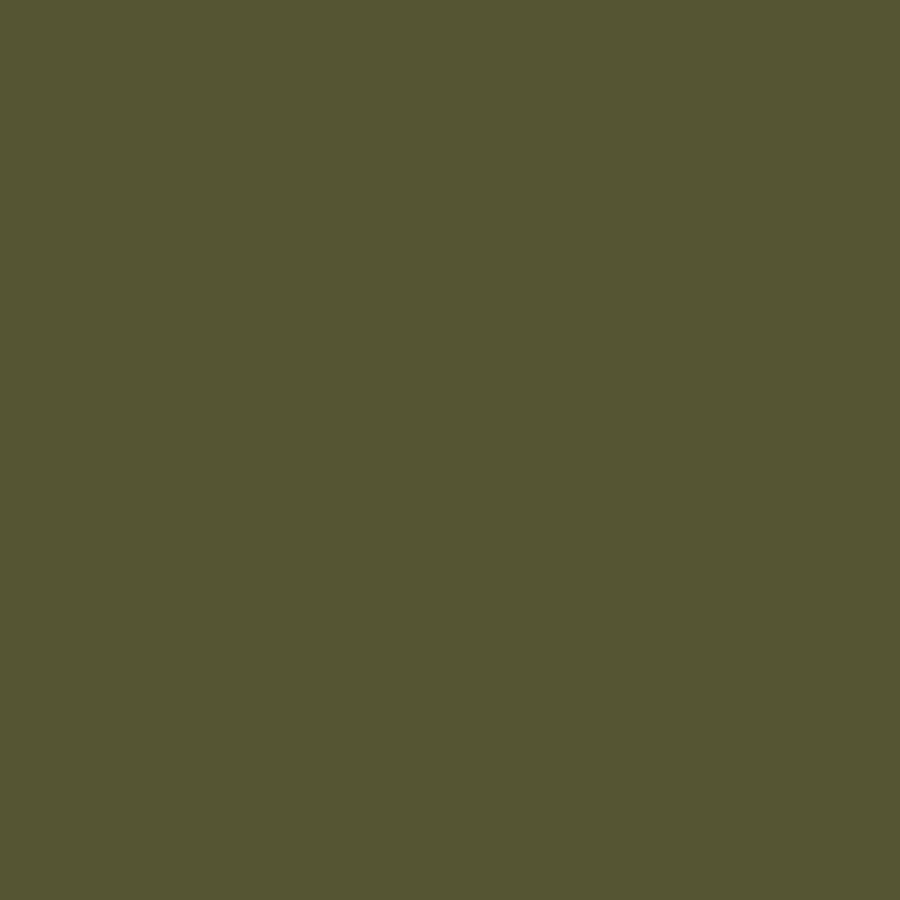 olive green dark