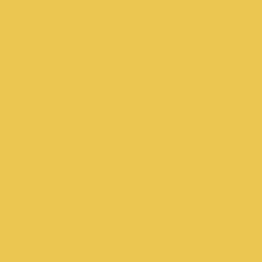 aur sclipitor