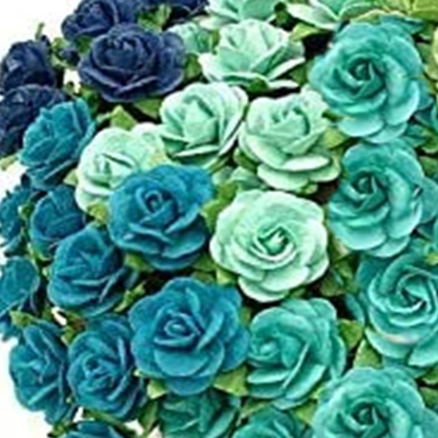 mix albastru - trandafir