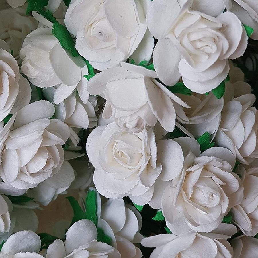 alb - trandafir