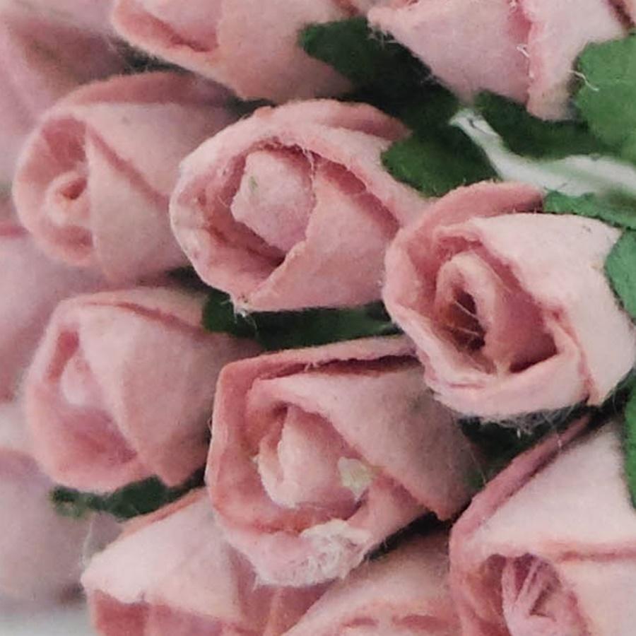 roz - boboc trandafir
