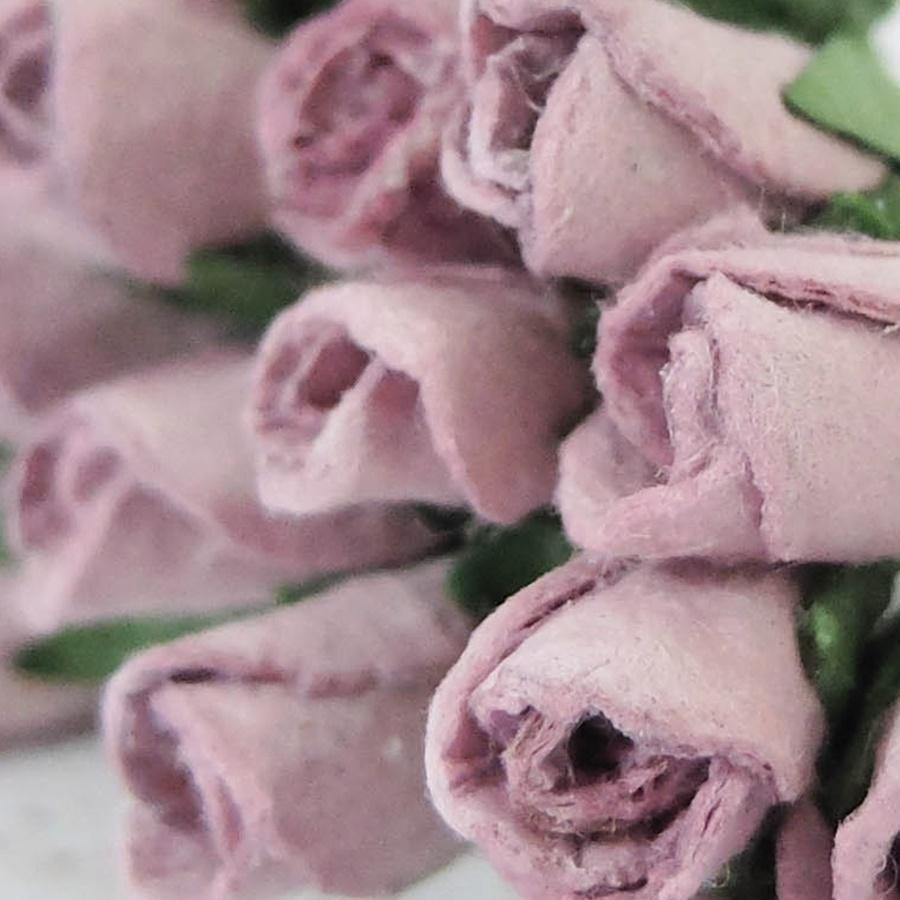lila - boboc trandafir