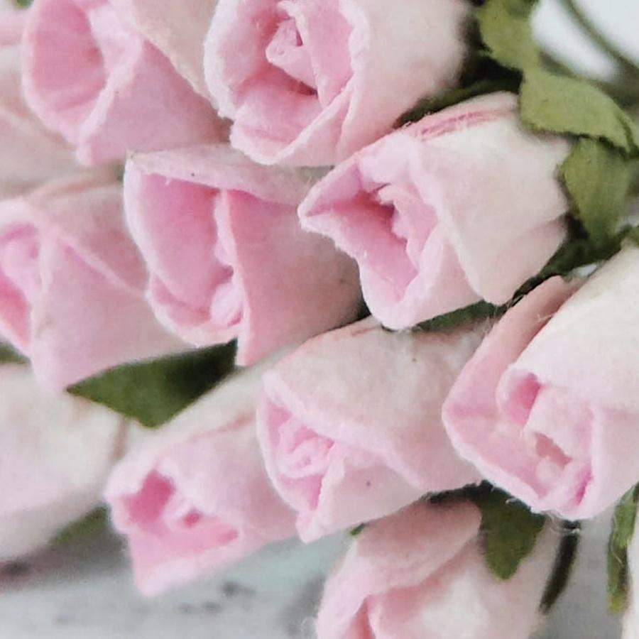 roz deschis - boboc trandafir