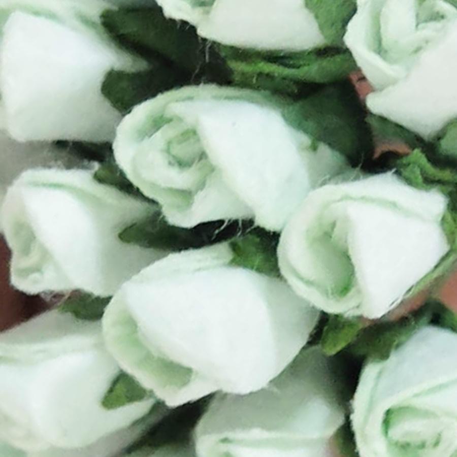 alb - boboc trandafir