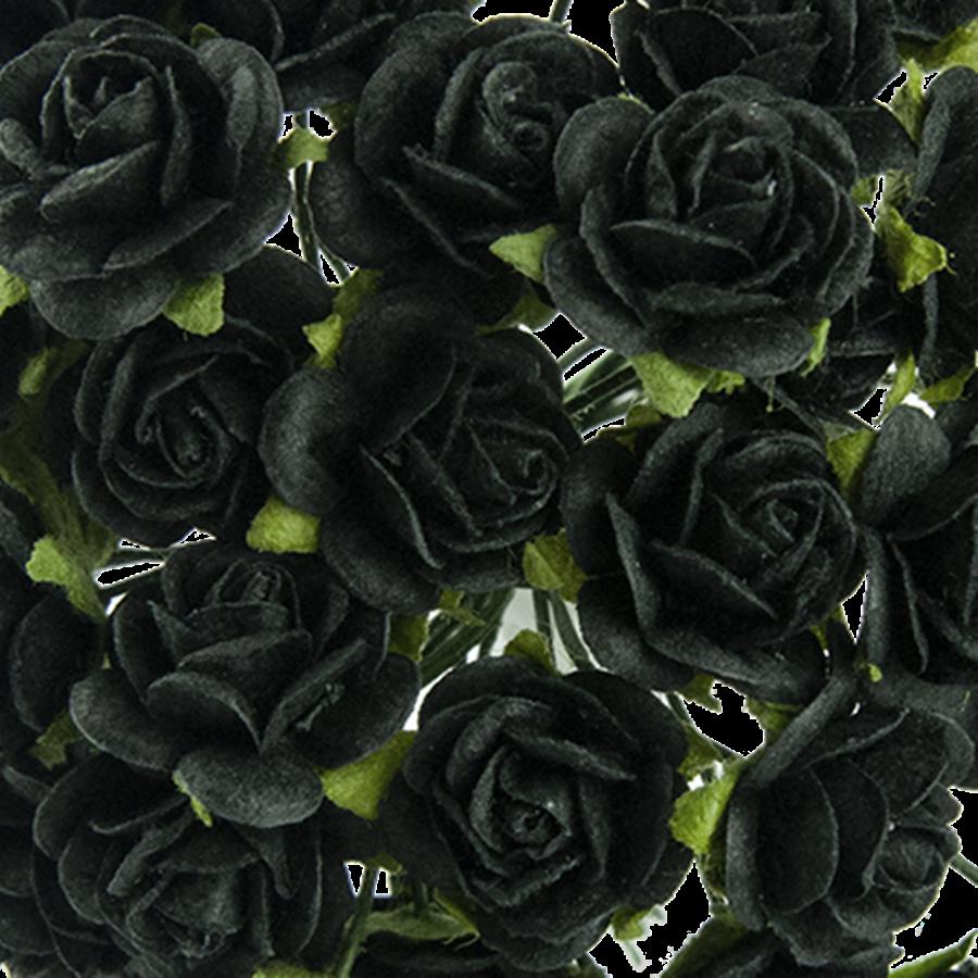 negru - trandafir