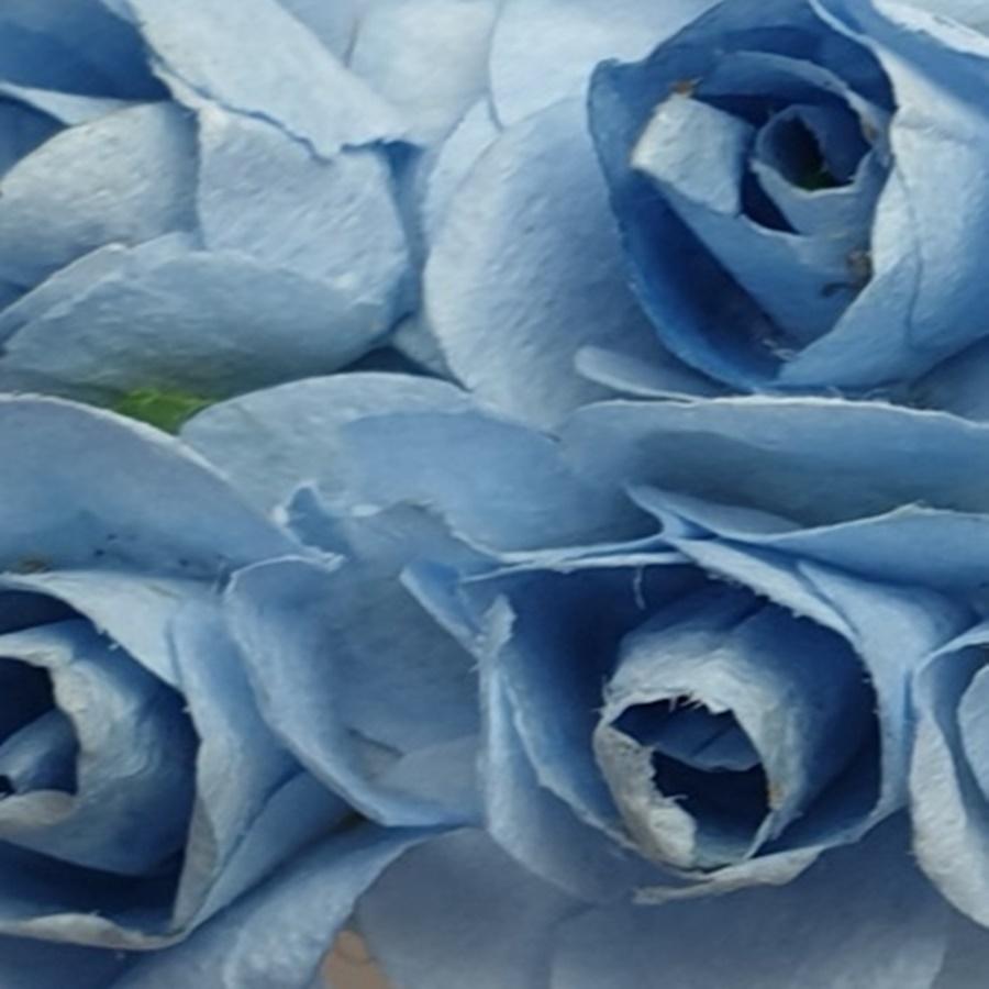 albastru deschis - flori hartie