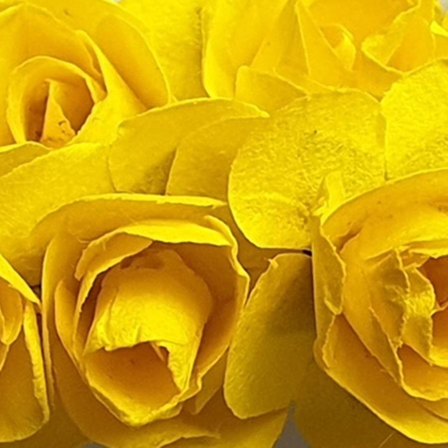 galben - flori hartie
