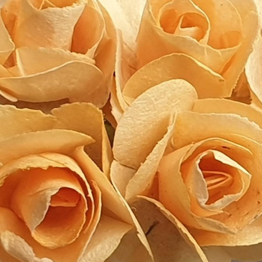 portocaliu deschis - flori hartie