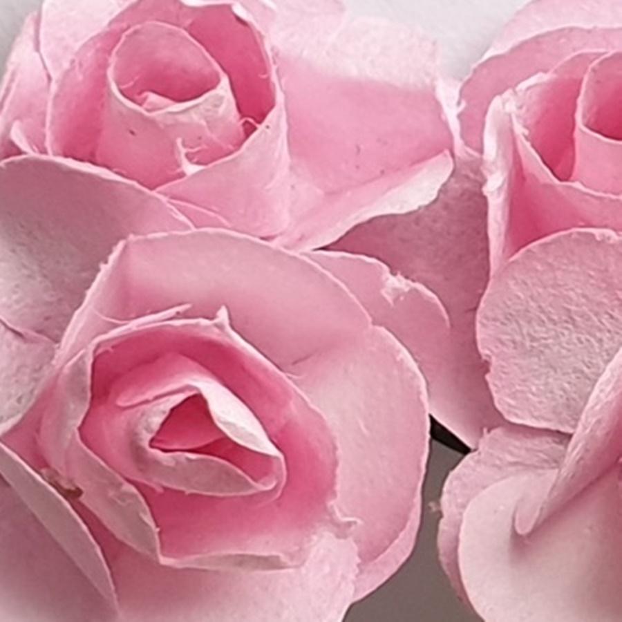 roz - flori hartie