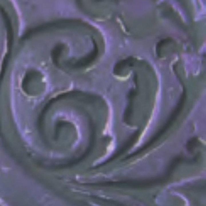chameleon violet