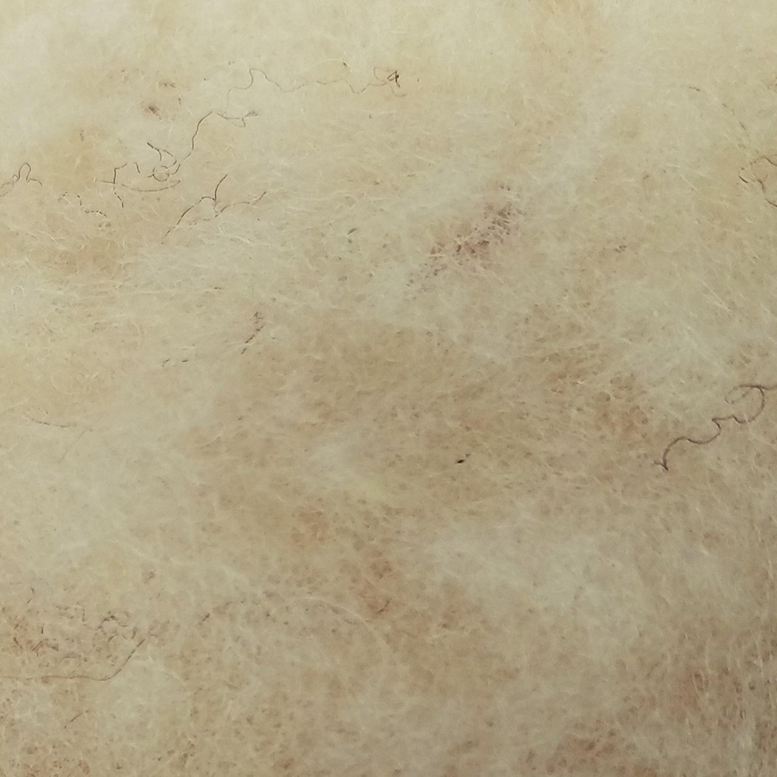 lana alb(natur)