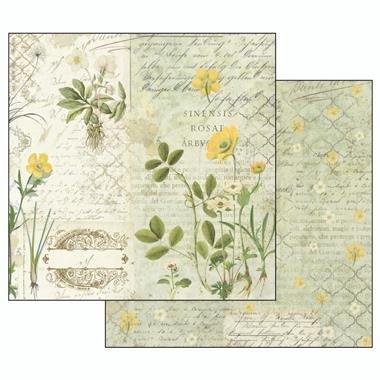 album-scrapbooking-herbarium-sbbl29-stamperia 5