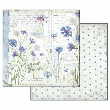 album-scrapbooking-herbarium-sbbl29-stamperia 8