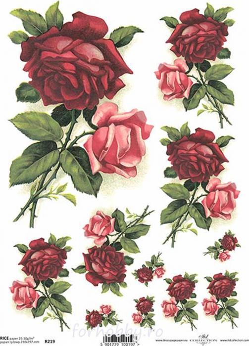 hartie-de-orez-trandafiri-itd-collection-r0219 0