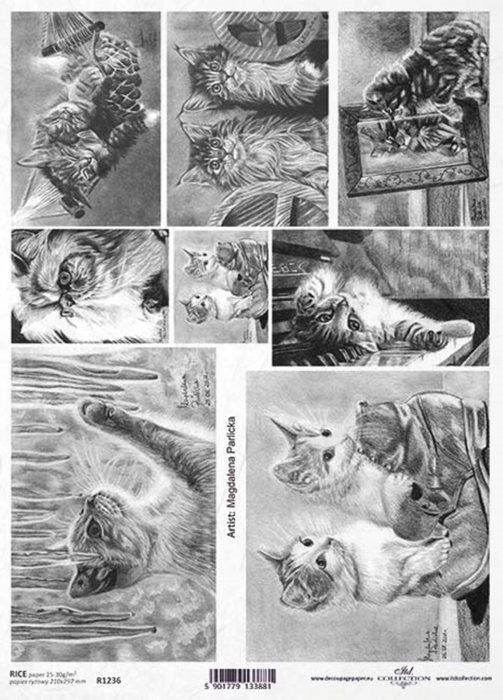 hartie-de-orez-pisici-itd-collection-r1236 1