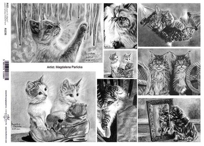 hartie-de-orez-pisici-itd-collection-r1236 0