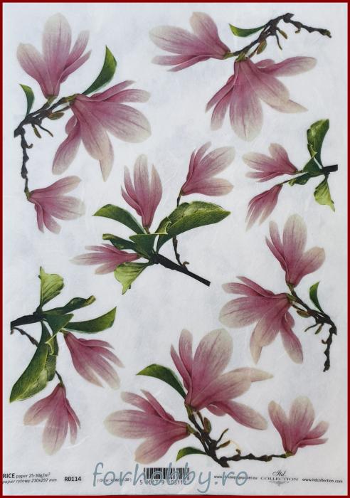 Hartie de orez - A4 - Magnolia 0