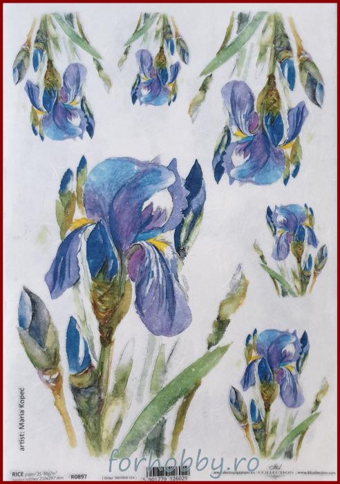 Hartie de orez - A4 - Iris