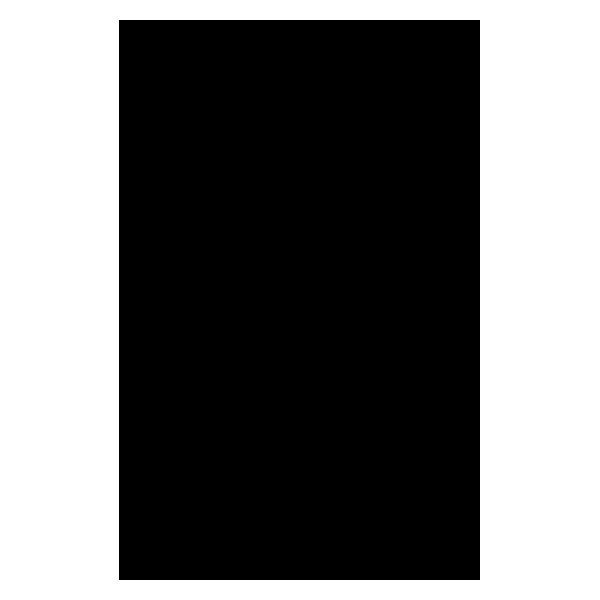 Fetru A4, negru, 2 mm grosime, rigid/ apretat 0