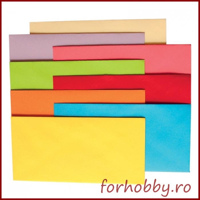 Plicuri colorate DL 0