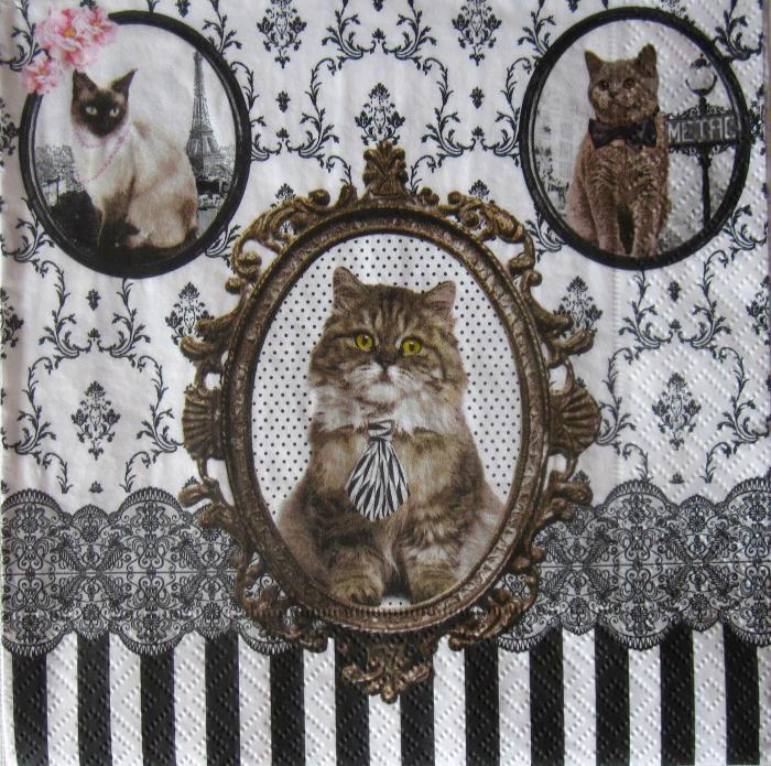 Servetel cu pisici 0
