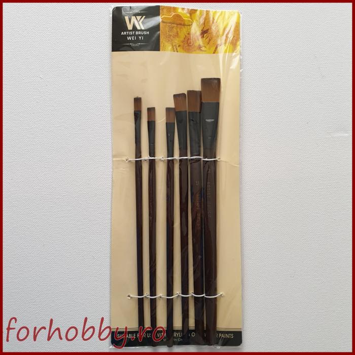 set-6-pensule-varf-drept-par-sintetic-2-12 1