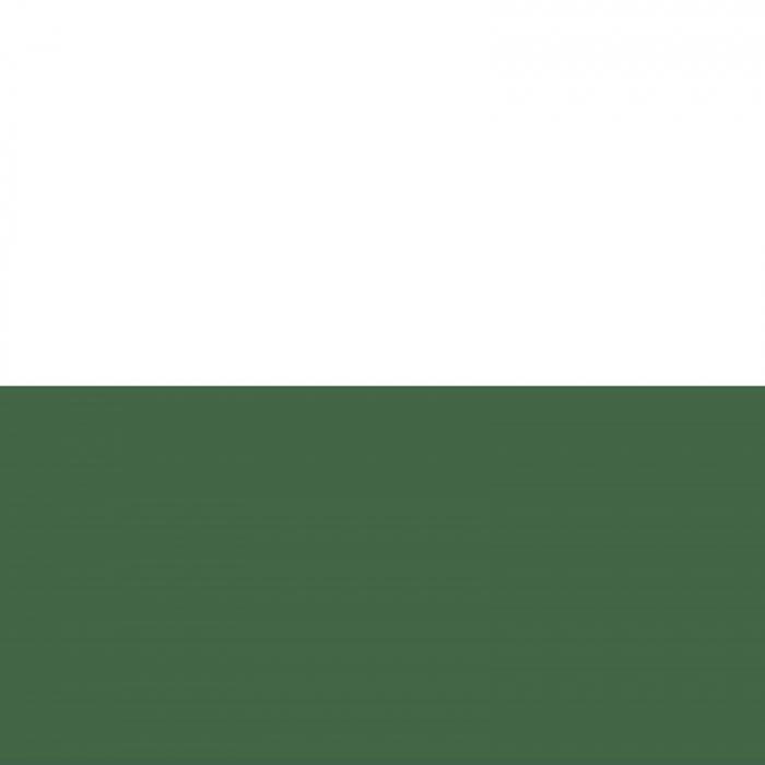 vopsea-acrilica-cremoasa-mata-60-ml-pentacolor-verde 1