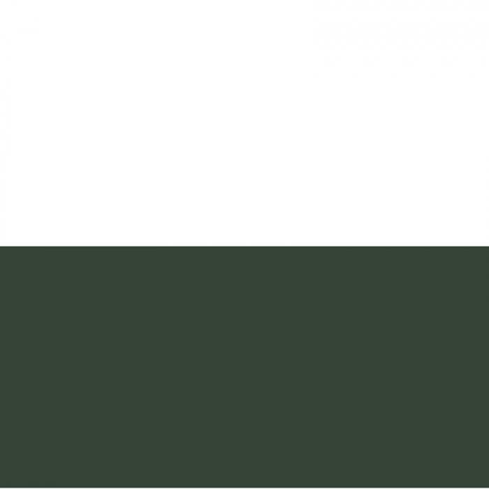 vopsea-acrilica-cremoasa-mata-60-ml-pentacolor-verde-brad 1
