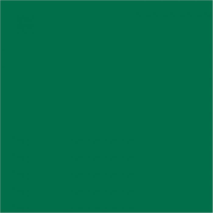 vopsea-acrilica-mata-50-ml-verde-brad 1