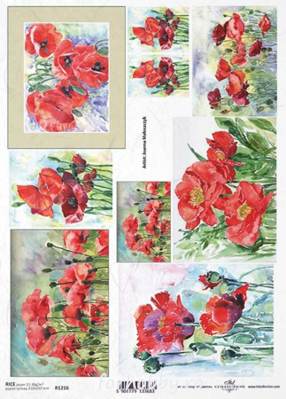 Hârtie de orez A4 - Picturi cu flori de mac - R12160