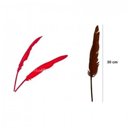 Pene decorative de gâscă - 30 cm0
