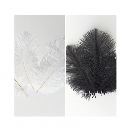 Pene decorative de struț - Alb și negru0