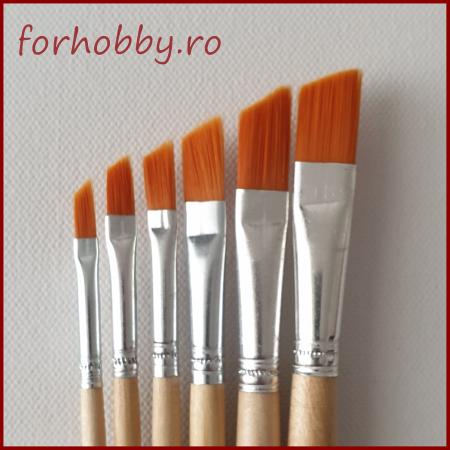 Set 6 pensule - varf oblic0