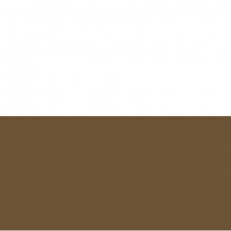 Vopsea acrilică cremoasă mată 60 ml - Maro pământ1