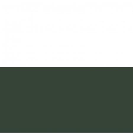Vopsea acrilică cremoasă mată 60 ml - Verde brad1