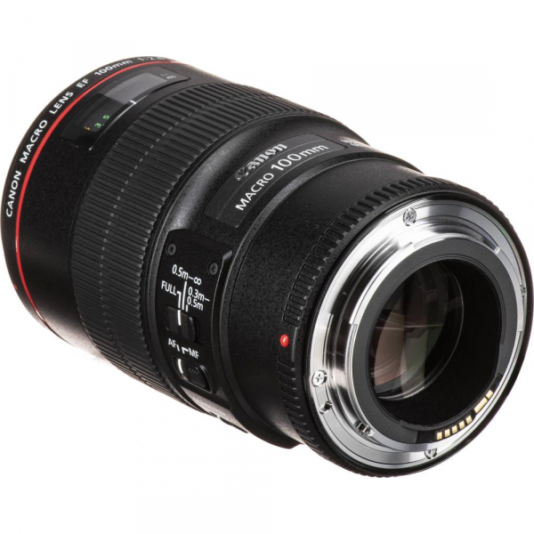 Canon EF 100mm f/2.8 L Macro IS USM 2